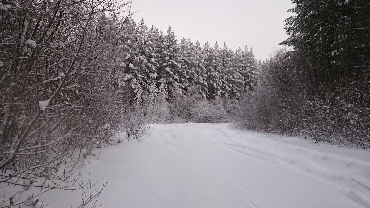 От Полдневой до Кладовки