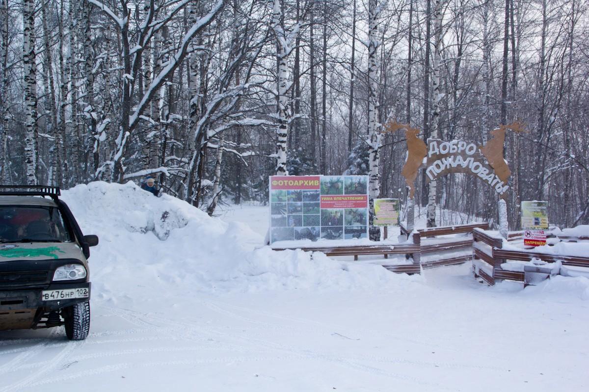 Ферма маралов